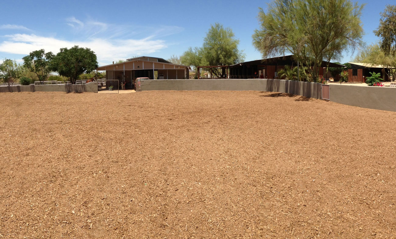 Horseback Riding Lessons in North Scottsdale Facilities Desert Palms