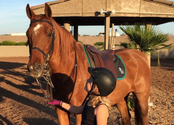 Riding Lessons in North Scottsdale Image of child with lesson horse On Desert Palms